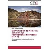 Biorremoción de Plomo en Solución por Pseudomonas fluorecens M1A-4S: Microorganismo Aislado de Ambiente mineros...