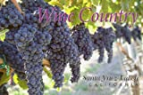SBPC 54-09I WINE COUNTRY SANTA YNEZ VALLEY CALIFORNIA .. POST CARD .. from Hibiscus Express