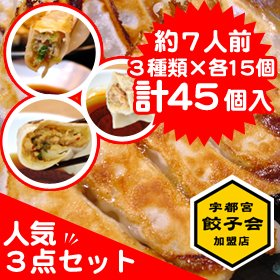 宇都宮餃子さつき 食べ比べ 人気3点セット 【45個入】