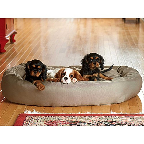 Brutus Tuff Comfy Cup Dog Bed-Medium - Chocolate - Improvements front-637965