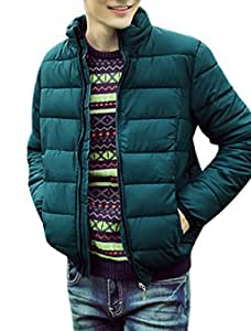 Zip Closed Long Sleeves Casual Quilted Padded Coat for Men
