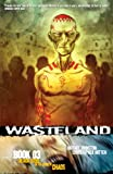 Wasteland Book 3: Black Steel in the Hour of Chaos (1934964085) by Johnston, Antony