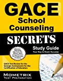 img - for GACE School Counseling Secrets Study Guide: GACE Test Review for the Georgia Assessments for the Certification of Educators book / textbook / text book