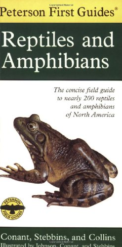 Peterson First Guide to Reptiles and Amphibians