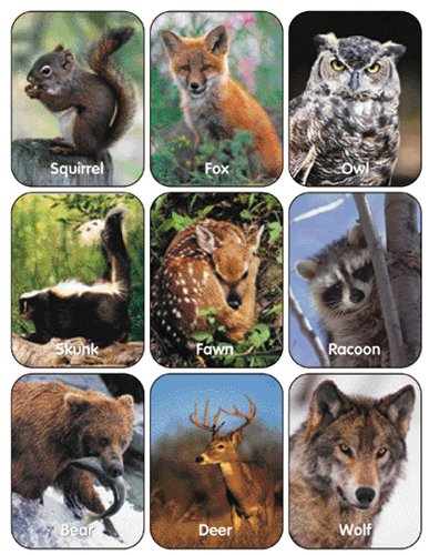Eureka Wildlife Animals Stickers, 36 Stickers
