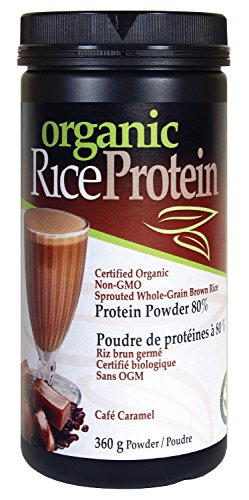 Organic Rice Protein Vegan 360G