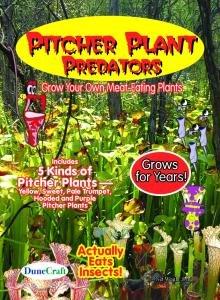 Pitcher Plant Predators - Carnivorous Plant Seeds (Pitcher Plant Predator compare prices)