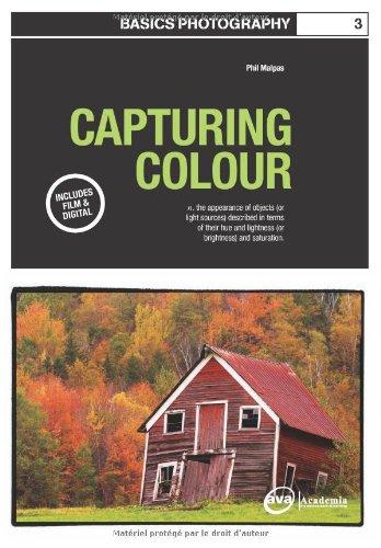 Basics Photography: Capturing Colour