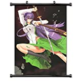 High School of the Dead Anime Fabric Wall Scroll Poster (16 x 23) Inches