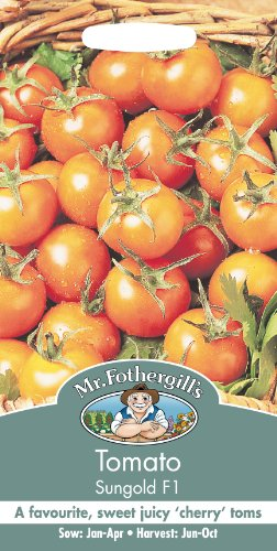 mr-fothergills-13406-sungold-f1-cherry-tomato-seeds