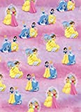 Disney Princess Gift Wrapping Paper & 2 gift tags
