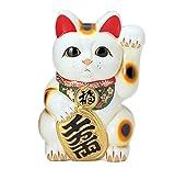 8416 梅月 8号白小判付招猫(左手) 貯金箱
