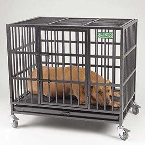 Cruising Companion Empire II Pet Cage, Large, Graphite