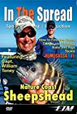 Saltwater Fishing: How to Catch Sheepshead, with Video Are Saltwater Sheepshead Fish Good To Eat