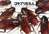 ゴキブリだもん?美しきゴキブリの世界?