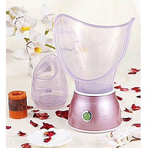 meydlee-spa-en-casa-hidratacion-limpiadora-piel-ionico-nanocare-facial-vapor-belleza-instrumento-ato