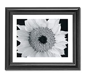 Yellow Sunflower B/W Photo Wall Picture Framed Art Print