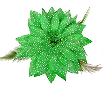 Blyyasgi (Tm) Womens and Girls Belly Dance Tribal Party Wedding Feather Hair Head Flower Pin Brooch Clip