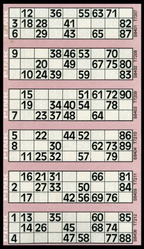 600-bingo-tickets-pad-of-pink-6-to-view-flyers