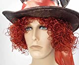 Adult Men's Mad Hatter Wig Henna Red (Henna Red)