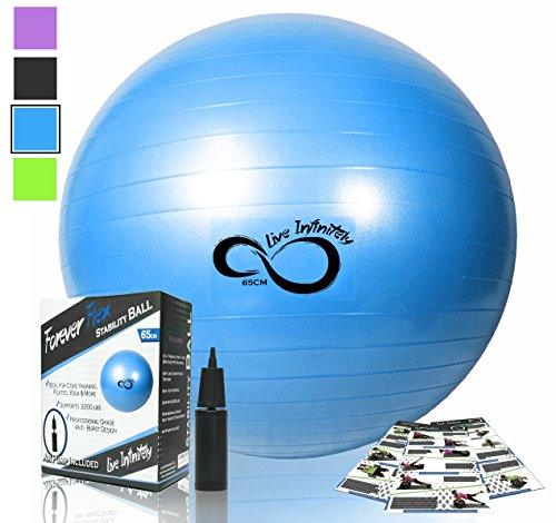 Exercise Ball -Professional Grade Exercise Equipment Anti Burst Tested with Hand Pump- Supports 2200lbs- Includes Workout Guide Access- 55cm/65cm/75cm/85cm Balance Balls (Blue, 75 cm)