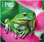 Frogs 2015 - Fr�sche: Original BrownT...