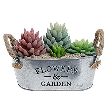 Rustic 'Flowers & Garden' Bucket Design Small Metal Succulent Plant Container w/ Twine Handles - MyGift®