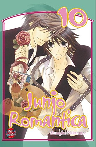 Junjo Romantica, Band 10
