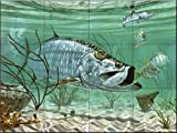 Marquesas Keys Tarpon by Don Ray Tile Mural for Kitchen Backsplash Bathroom Wall Tile Mural