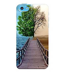 ColourCraft Creative Image Design Back Case Cover for APPLE IPHONE 5C