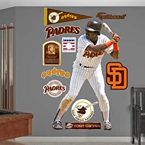 Amazon.com : MLB San Diego Padres Tony Gwynn Wall Graphics : Sports