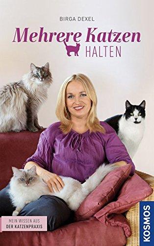 Mehrere-Katzen-halten-Mein-Wissen-aus-der-Katzenpraxis