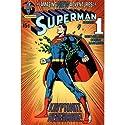 (24x36) Superman (Kryptonite Nevermore) Art Poster Print