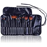 SHANY Professional Cosmetic Brush Set