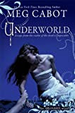 img - for Abandon #2: Underworld book / textbook / text book