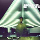 Noel Gallagher's High Flying Birds (Vinyl)
