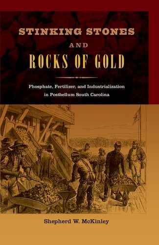 Stinking Stones And Rocks Of Gold: Phosphate, Fertilizer, And Industrialization In Postbellum South Carolina (New Perspectives On The History Of The South)