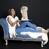 Company of Animals TPHF2 Pet Head Furtastic Crème Rinse, 475 ml -