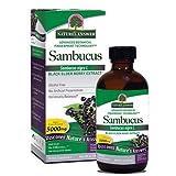 Natures Answer Alcohol-Free Sambucus Black Elder Berry Extract, 8-Fluid Ounces
