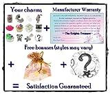 Timeline Trinketts Charm Bracelet Beads Fits Pandora Jewelry Enamel Rhinestone - Just for Girls 2013