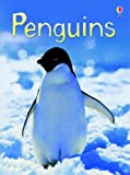 Penguins (Usborne Beginners)