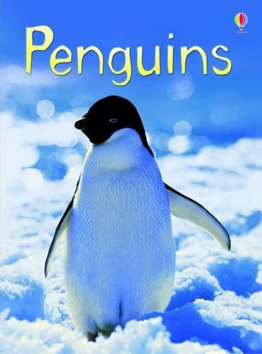 penguins-usborne-beginners