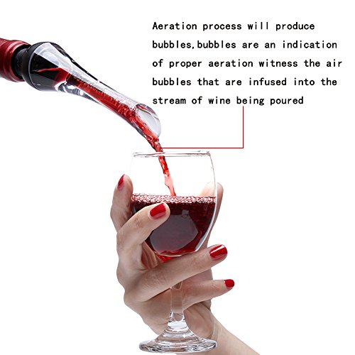 Baen Sendi Wine Aerator Pourer - Aerating Wine Pourer - Premium Wine Decanter