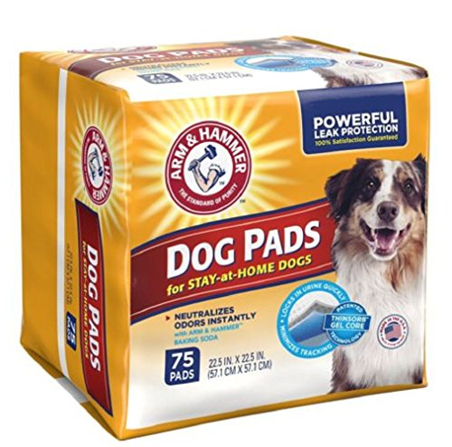 Arm & Hammer Tear-resistant top sheet withstands digging Ultra Absorbent Adult Dog Pads, 75 count (Arm And Hammer Backing Soda compare prices)