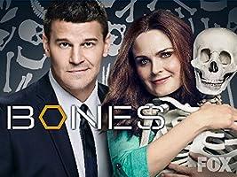 Bones Season 10 [HD]