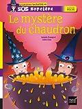 """Afficher """"SOS Sorcières Le Mystère du chaudron"""""""