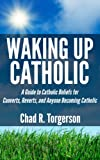 img - for Waking Up Catholic: A Guide to Catholic Beliefs for Converts, Reverts, and Anyone Becoming Catholic book / textbook / text book