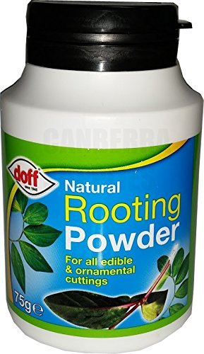 doff-natural-rooting-powder-promotes-strong-healthy-roots-75g-1
