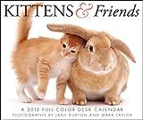 Kittens & Friends Desk 2015 Calendar
