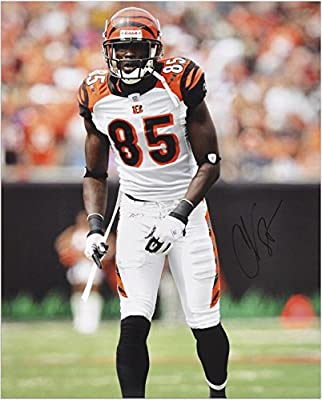 "Chad Johnson Cincinnati Bengals Autographed 16"" x 20"" Pose Photograph - Fanatics Authentic Certified"